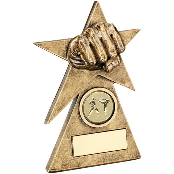 Picture of Brz/gold Martial Arts Star On Pyramid Base Trophy - (1in Centre) - 5in (127mm)