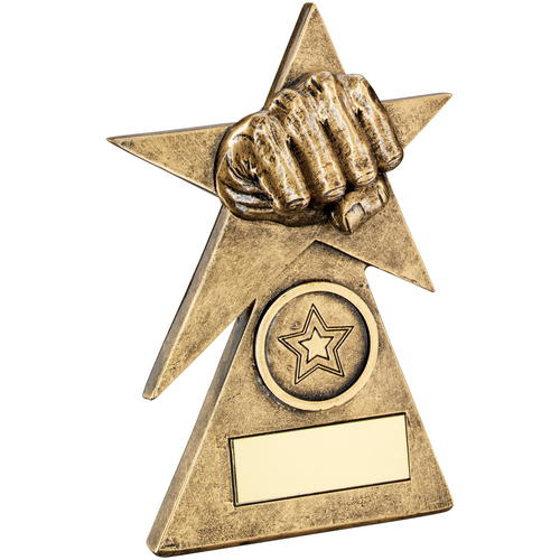 Picture of Brz/gold Martial Arts Star On Pyramid Base Trophy - (1in Centre) - 4in (102mm)