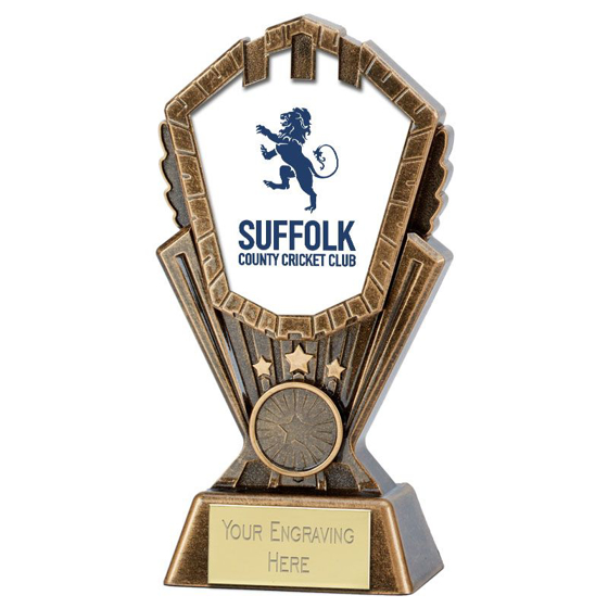 Picture of Personalised Cosmos Cricket Award (7 inch (17.5cm)