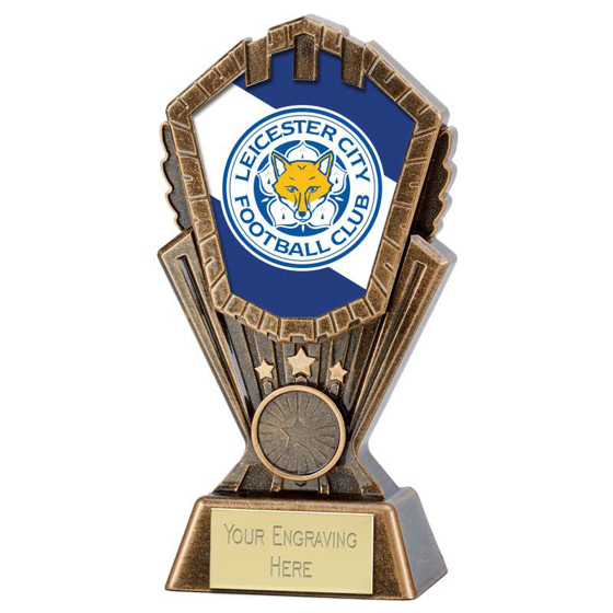 Picture of Personalised Cosmos Generic Award (7 inch (17.5cm)