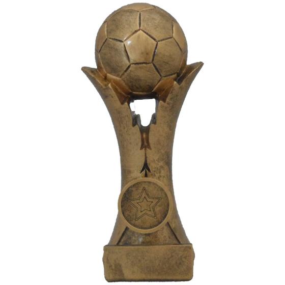 Picture of Football Split Pedestal Award 210mm