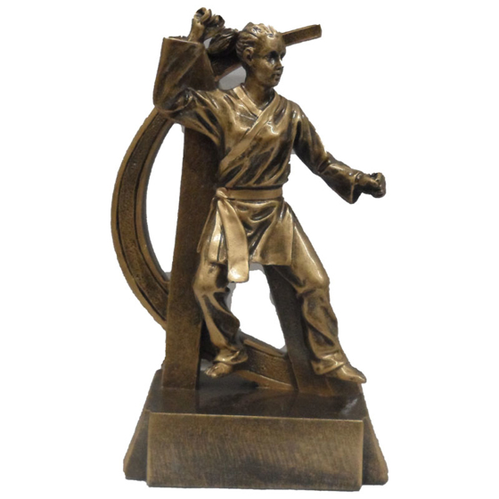 Picture of Female Martial Arts Award 165mm