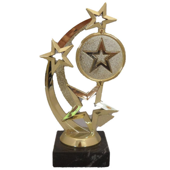 Picture of Spinning Star Award 190mm