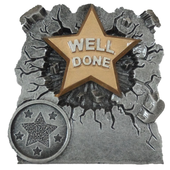 Picture of Well Done Star Award 80mm