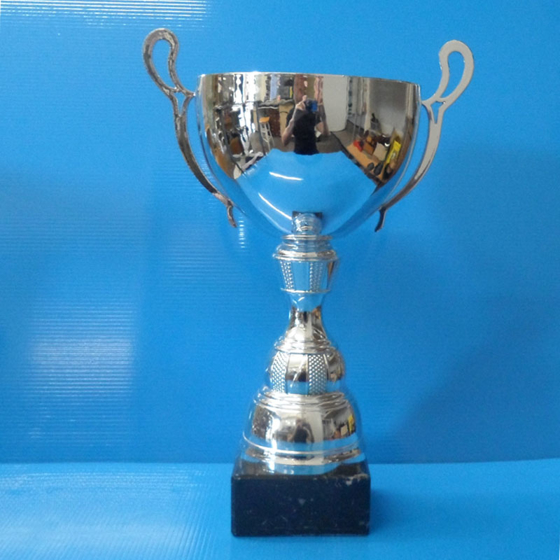 Picture of Plain Bowl Silver Handled Cup 310mm