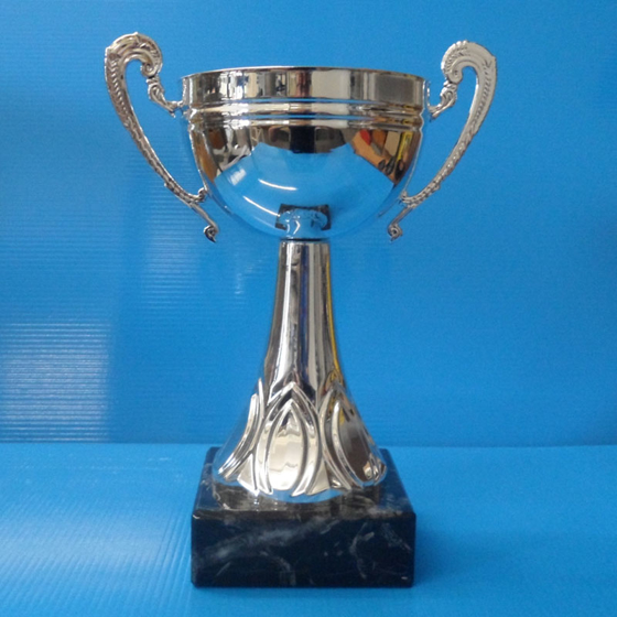Picture of Champion Silver Cup 215mm